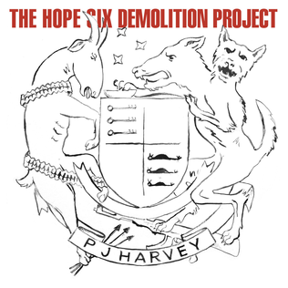 The hope six demolition project (2016)